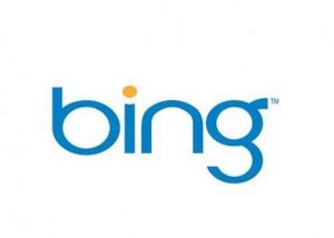 bing1 300x214