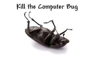 business computer bug