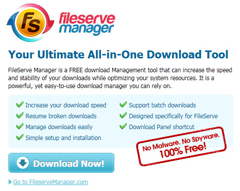 fileserve manager