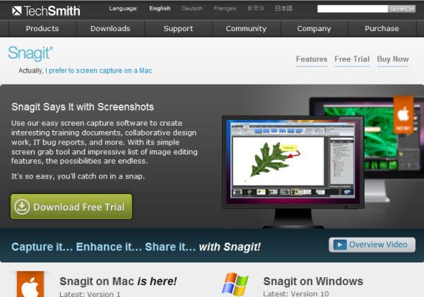 snagit screen capture resized 600