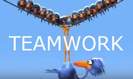 teamwork for the birds